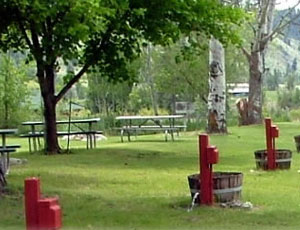 Carlton RV Park @ Hwy 153 - Picture 3