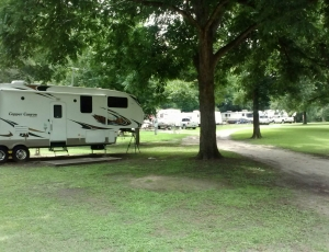Betty's RV Park - Picture 3