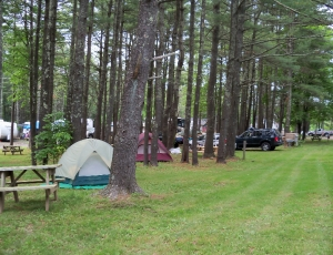 Blue Mountain Campground - Picture 1