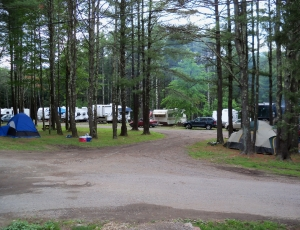 Blue Mountain Campground - Picture 2