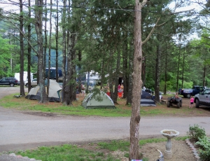 Blue Mountain Campground - Picture 3
