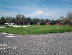 Buena Vista Farms, Inc - Picture 2
