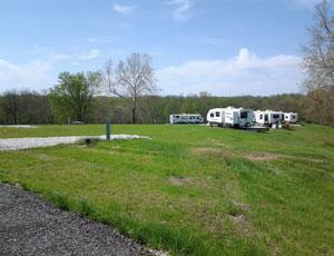 Buena Vista Farms, Inc - Picture 3