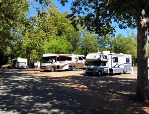 Calistoga RV Park & Napa County Fair - Picture 3