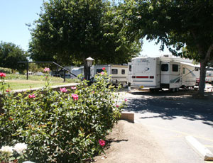 Castaic Lake RV Resort - Picture 3