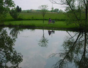 Deer Ridge Camping Resort - Picture 2