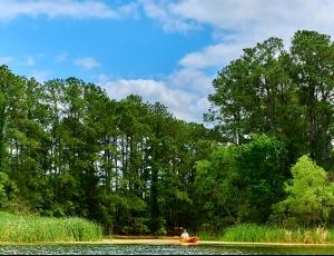 Lake Bastrop North Shore Park - Picture 1