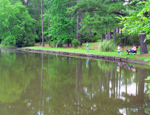 Lake Pines RV Park & Campground - Picture 3