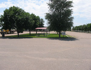 Marshall Ash Village - Picture 1