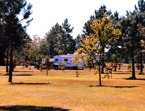 Paradise Lake RV Park - Picture 2
