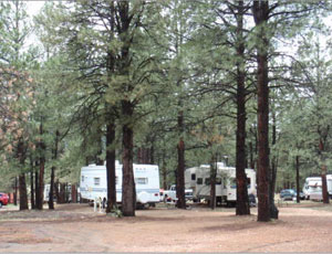 Pendaries RV Park - Picture 3