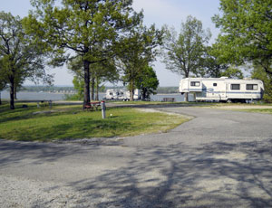 Pine Island RV Resort - Picture 3