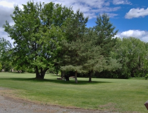 River Haven RV Park - Picture 1