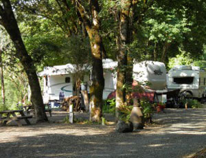 Sawyers Rapids RV Resort - Picture 1
