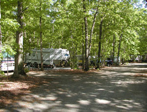 Small Country Campground - Picture 1