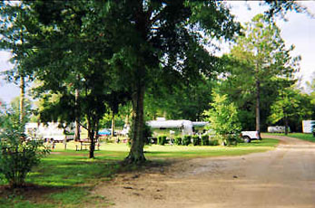 Sun Runners RV Park - Picture 1