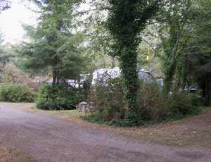 Surfwood RV And Campground - Picture 1