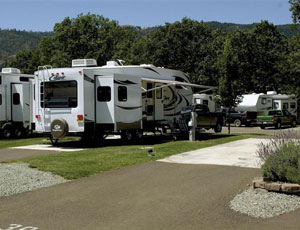 Tri City RV Park - Picture 3