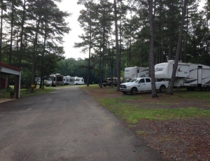 Golden Pond RV Park - Picture 2