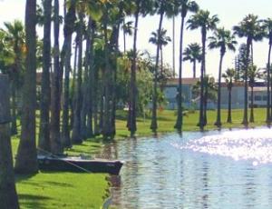Palm Resaca Park - Picture 3